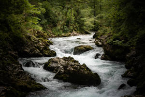 Slovenia River by Lakela