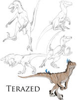 Terazed Sketch Page Comm by Teggy