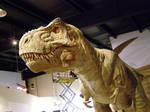tyrannosaur 2 by gurukitty