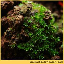 Tiny Green by waikar3d
