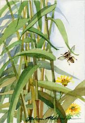 The Bee by LenaAkhumova