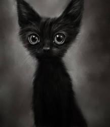 Black by Lusidus