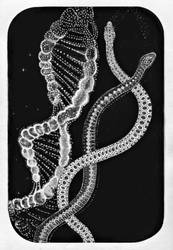 Day 15. DNA by Lusidus