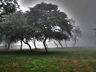 Greener pastures across by adityagautam