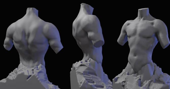 Male Anatomy Study 1 by zombat