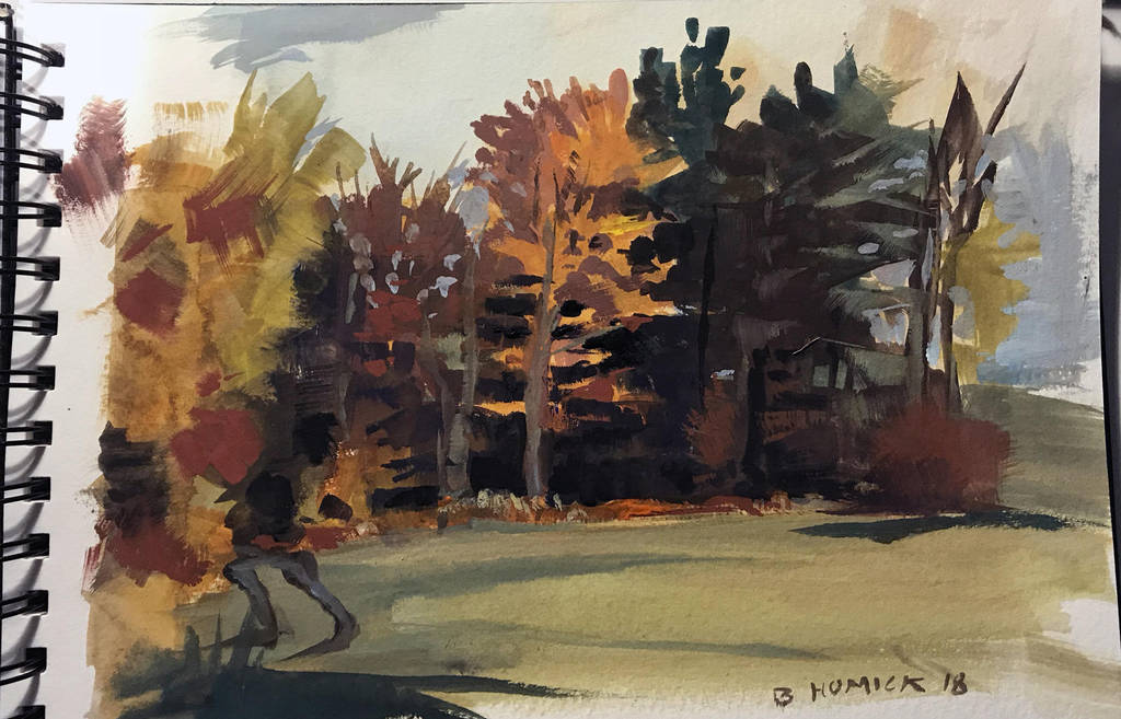 Fall in Vermont 2 by zombat