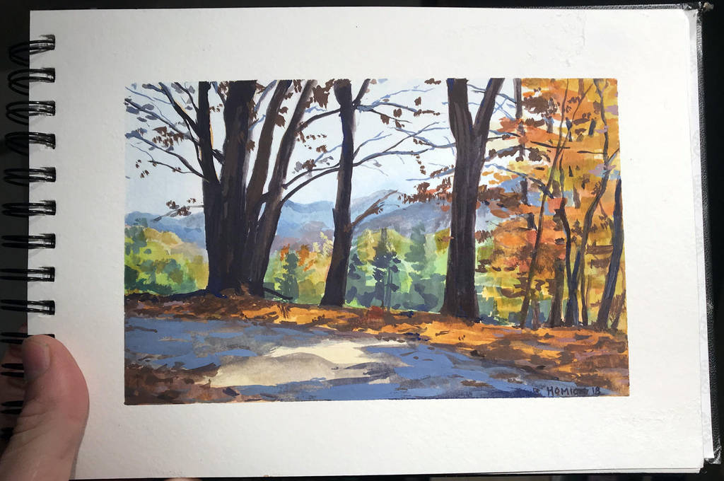 Fall in Vermont 3 by zombat