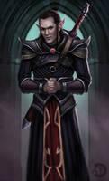 Dark Elf Sell Sword by bearcub
