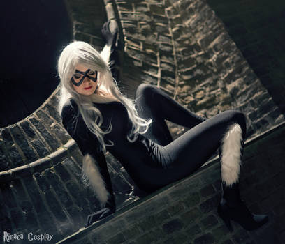 Black Cat - City view by Rinaca-Cosplay