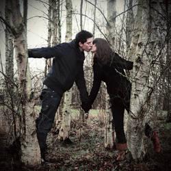 in the dark woods by ntscha