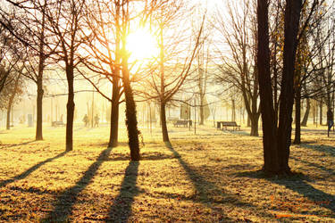 Cold Morning 2 by IsailaPhotography