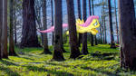 Flutter Forest (PC Wallpaper) by VanillaMocha01