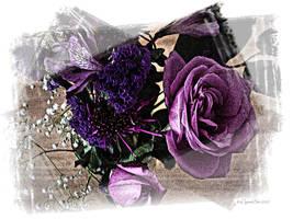 Purple Rose by digitalbits