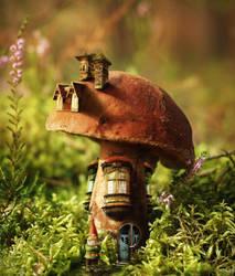 Mushroom Valley by mirzaercin