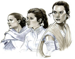 May the 4th by mcguan