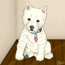 West Highland White Terrier by ArrowRules