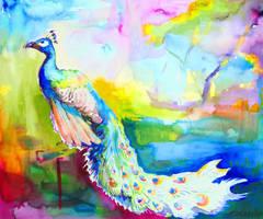 rainbow peacock by zersen