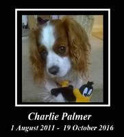 RIP Charlie by MDKartoons