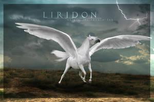 Liridon by Nikkayla