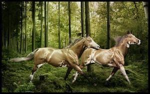 Into the Jungle by Nikkayla