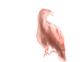 Bird - Art by my mother v2 by jomy10