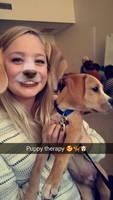 Puppy in Training by bobbyj251