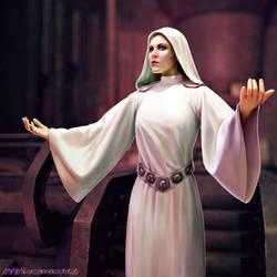 Leia Organa by SteveArgyle