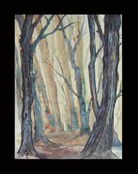 misty grove of darkenwood by tamaratomorrow