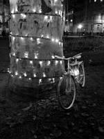 Ride 'til dark by Turtle-poetique