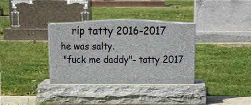 A tribute to tatty by MayMaystudios