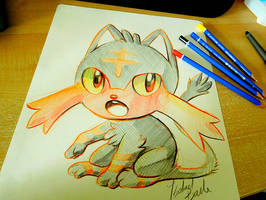 Drawmypetwebby and we took off by tikopets