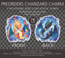 Preorder Charizard X and Y Charm by tikopets