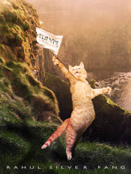 CAT DANCER by rahulsilverfang