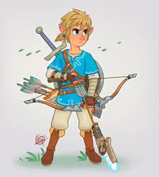 BOTW Link by LuigiL