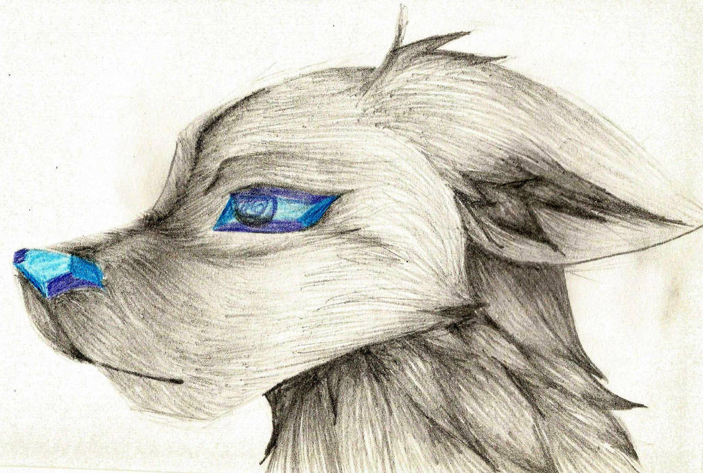 Diamond canine :3 by WeraHatake