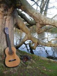 Guitar by the lake by roguemarielebeau
