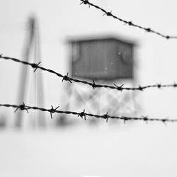Majdanek by anoxado