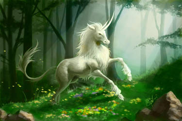 Unicorn by MeganMissfit