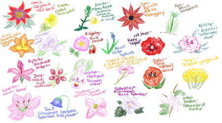 YogsPlants by pinkflora12