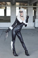 Black Cat IX by MeganCoffey