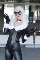 Black Cat XII by MeganCoffey