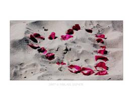 Making love at the beach by Manveru