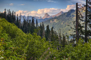 On the road to Mount Baker by arnaudperret