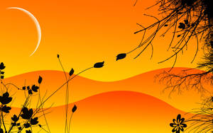 dawn by Varish