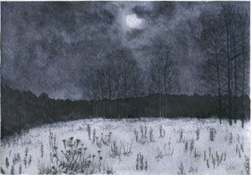 Winter night by ivan095