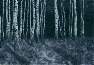 Moonlit grove by ivan095