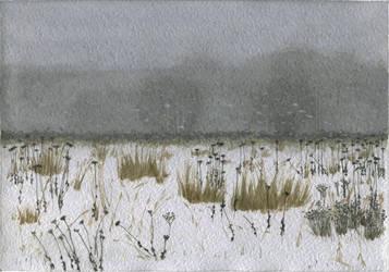 Snowstorm by ivan095