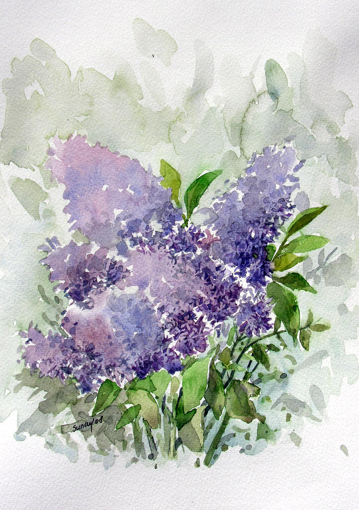 watercolor- Lilac