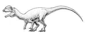 Sinosaurus triassicus by Spinosaurus1915