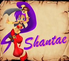 Pirate Shantae by GamerGirlNinten-SEGA